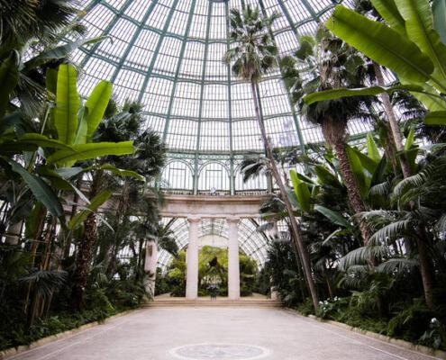 Royal-Greenhouse-495×400